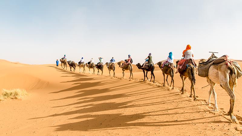 Kết quả hình ảnh cho sahara