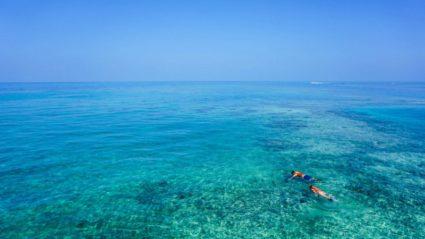 Dive in: 5 ocean adventures your family will love