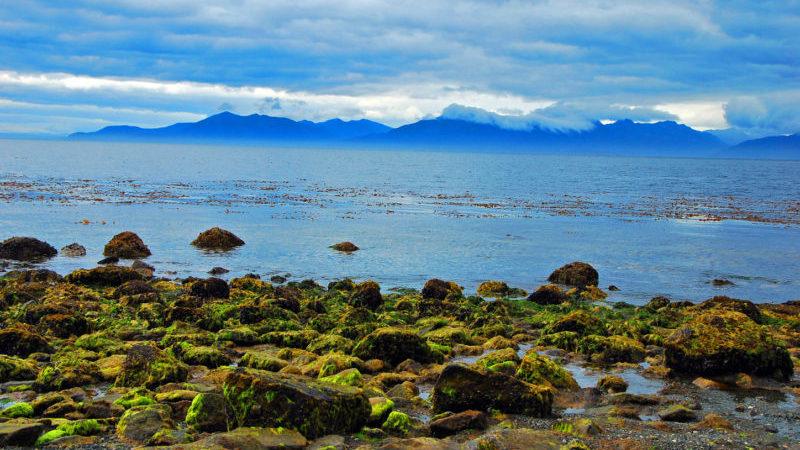 Cabo Froward Patagonia