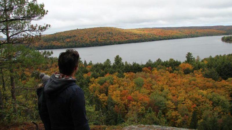 Algonquin Park vista Canada