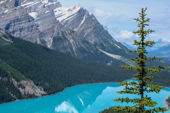 Peyto Lake, in the Canadian Rocky Mountains