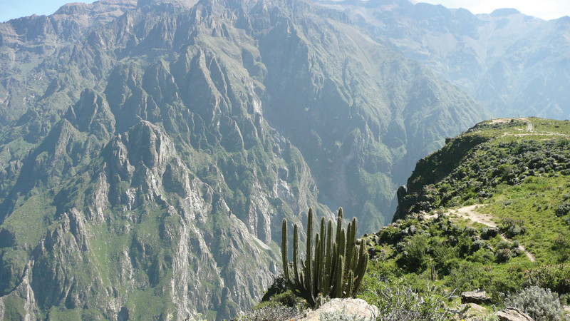 peru s colca canyon the ultimate trekking guide intrepid travel blog