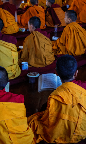 Young monks during morning meditation