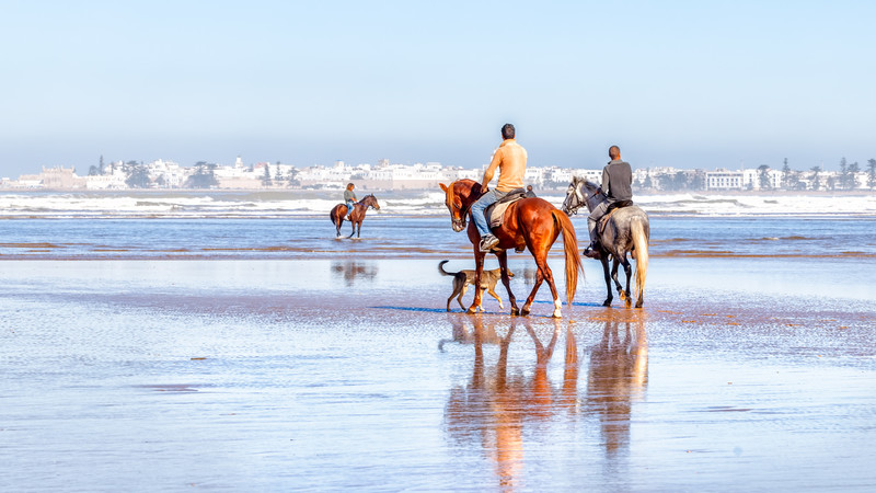 Morocco top 10 Essaouira horse ride