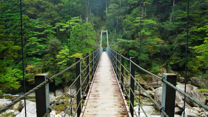 Yakushima Japan bridge