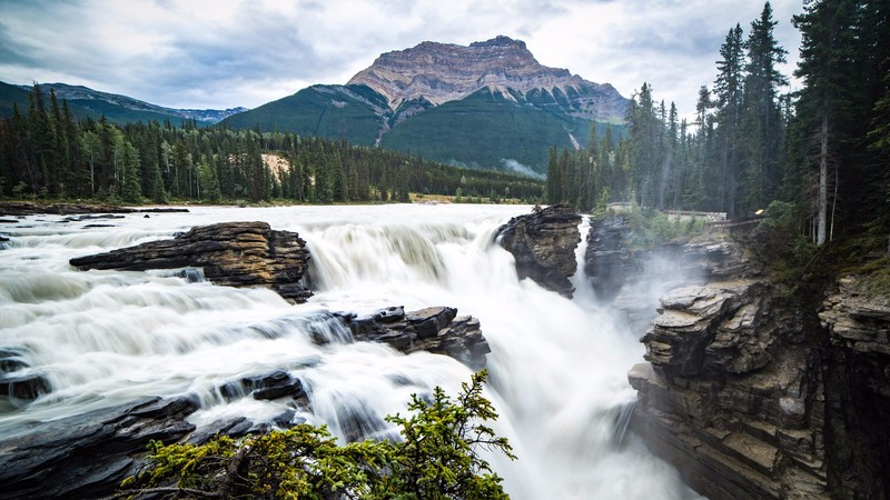 Waterfall in Jasper National Park