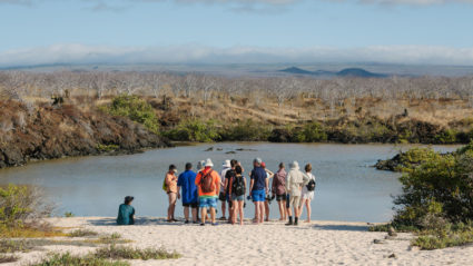 The Galapagos in photos: What an Intrepid trip is really like