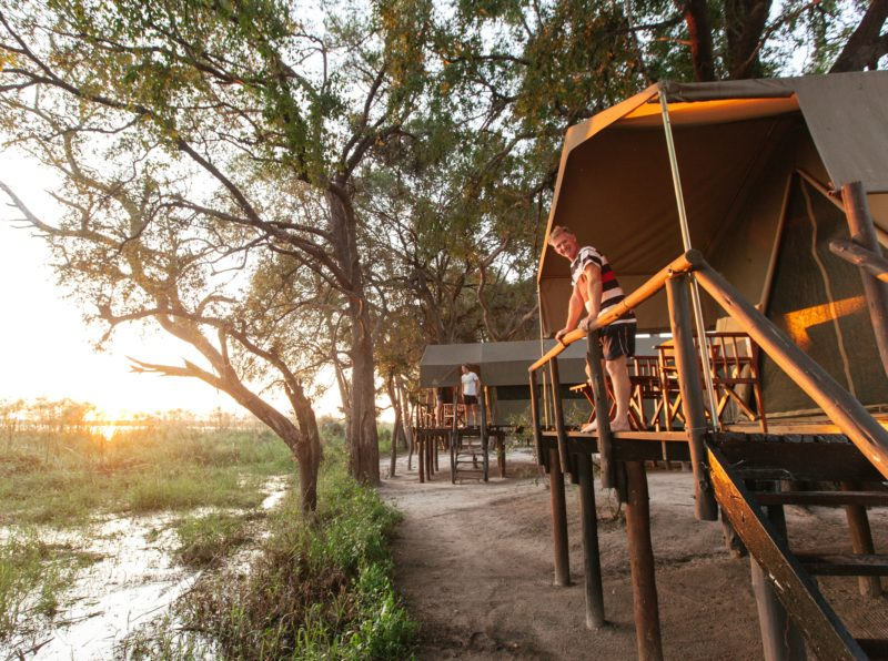 Safari in Botswana tour