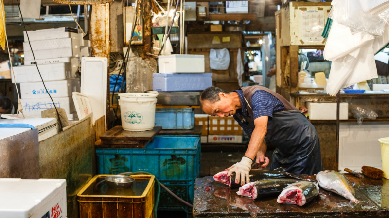 Inside a Tokyo fishmongers