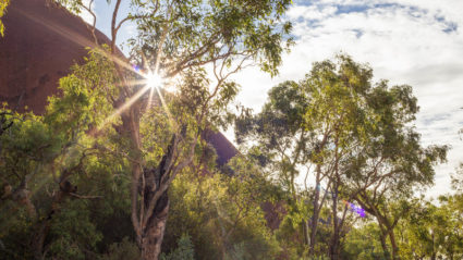 Why one traveller quit her office job and moved to the Australian Outback