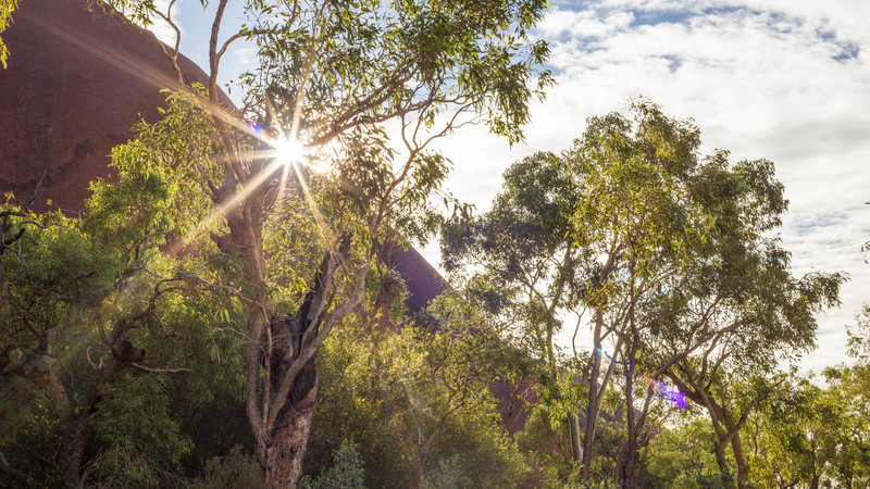 Sunrise in the Northern Territory