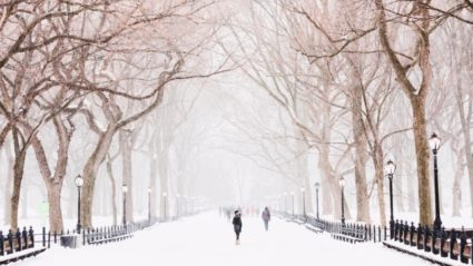 Why I love New York in winter