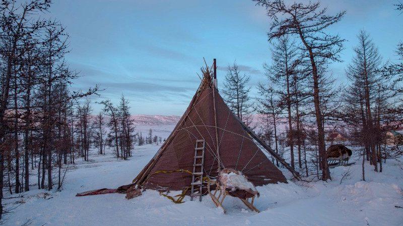 A Nenet teepee on the Yamal Peninsula