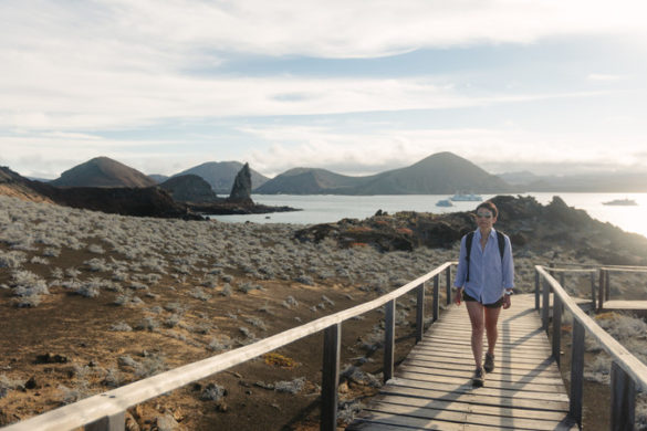A traveller walks along a boardwalk in the Galapagos