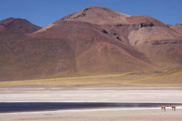 Beautiful views of Atacama landscape