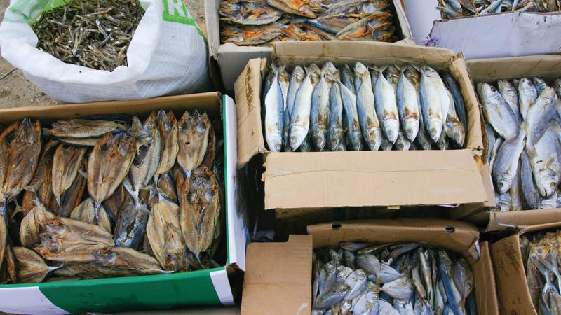 iceland fish market