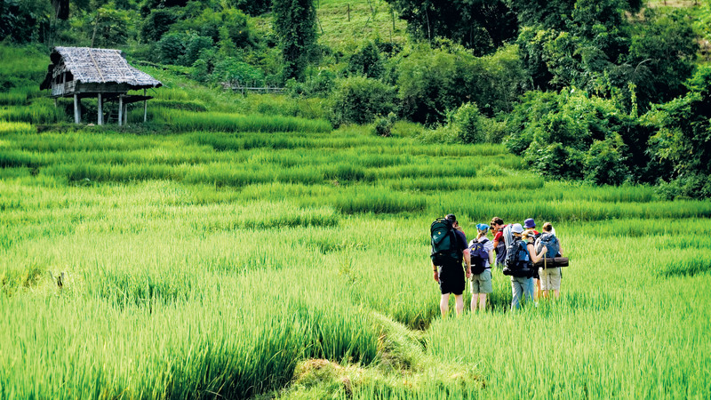 A group of travellers trek through to a hill tribe in Thailand