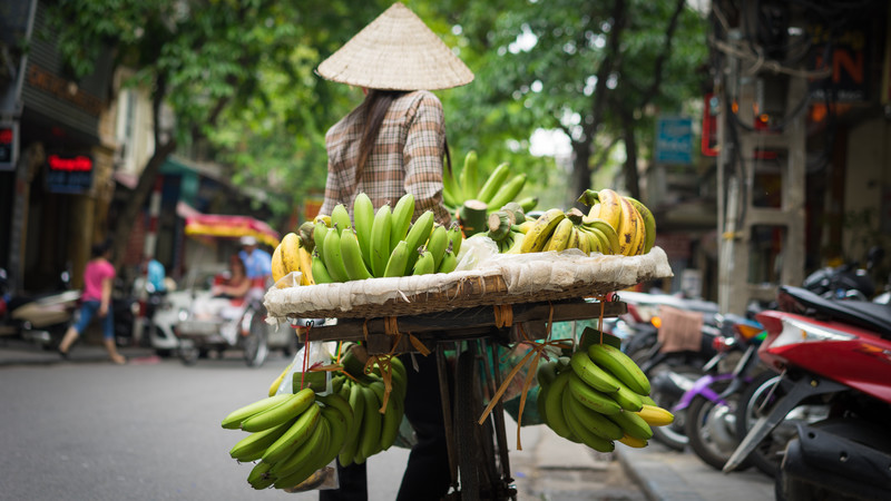 A woman in Hanoi sells bananas