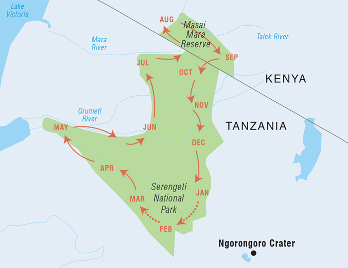Wildebeest migration guide