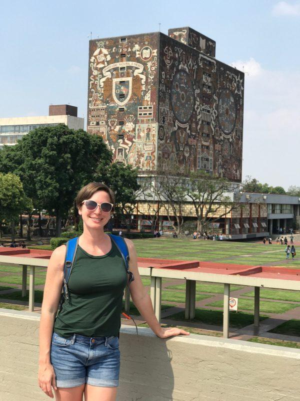 Mexico City university art