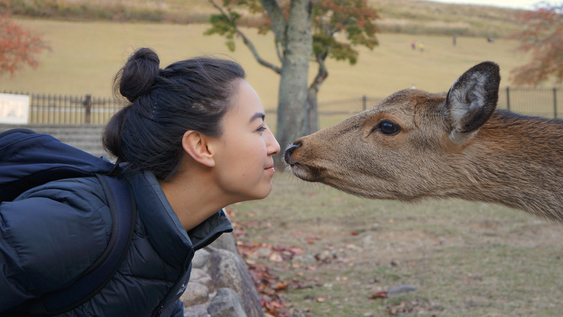 Teenage girl at Nara Deer Park