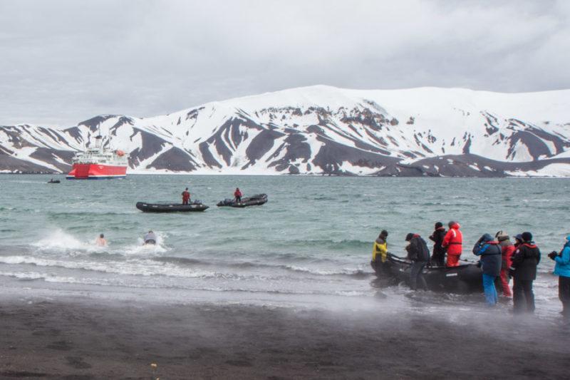 polar plunge antarctica