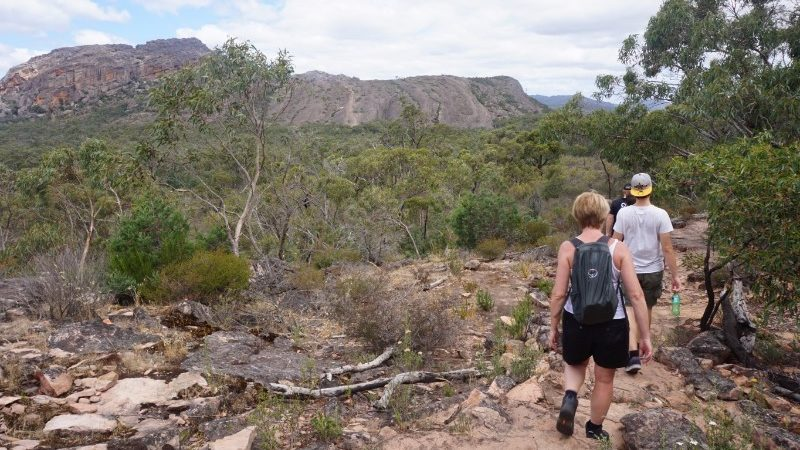 Two hikers in the Australian bush