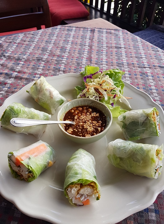 What to do in Chiang Mai spring rolls