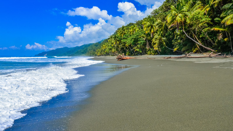 The Best Of Costa Rica 10 Reasons To Visit Asap Intrepid Travel Blog