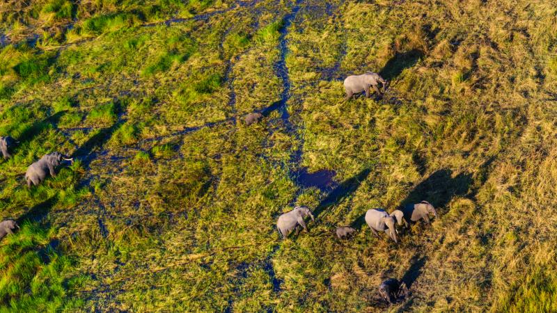 Views from a plane over the Okavango Deltas