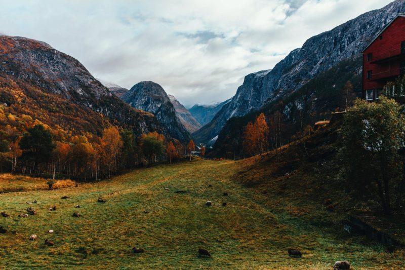 Norway Nature Naeroydalen Valley