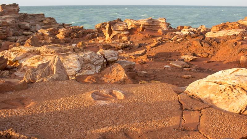 Ancient dinosaur prints at Gantheaume Point