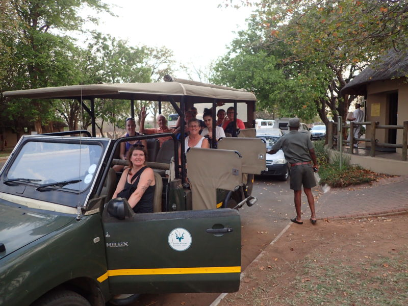 Southern Africa safari game drives