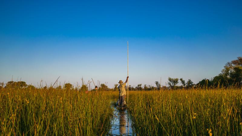 A mokoro through the Okavango Delta