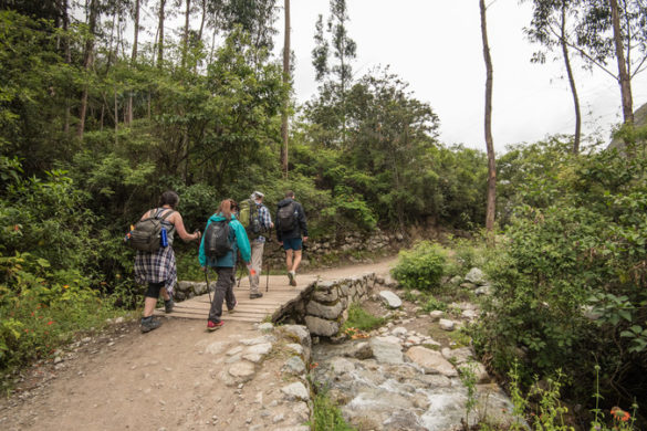 Trekkers on the Inca Trail, Peru