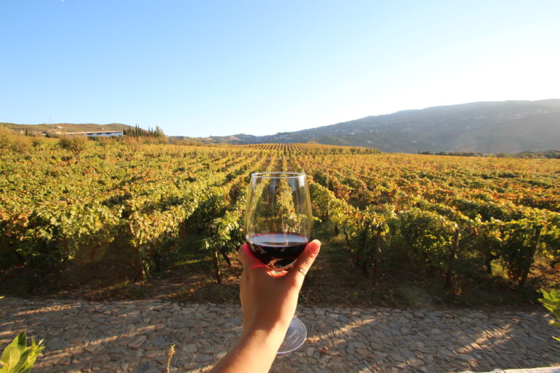 Portugal one week guide wine Douro Valley