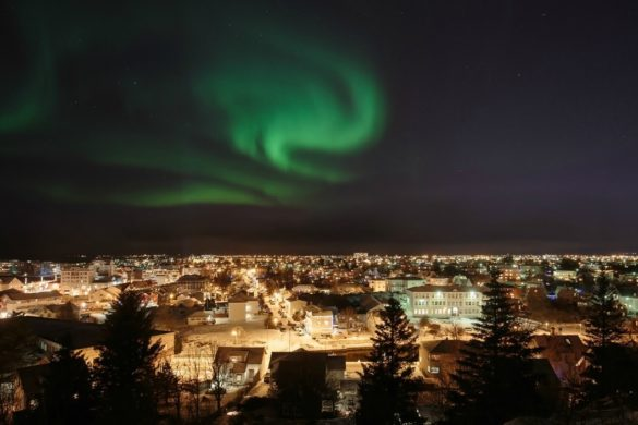 Reykjavik food nightlife guide