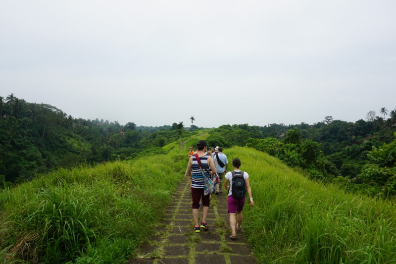 What to do in Ubud hiking
