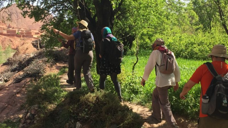 Trekkers walk to the kasbah in Morocco