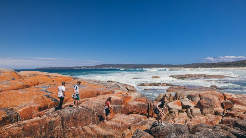 Exploring Bay of Fires, Tasmania
