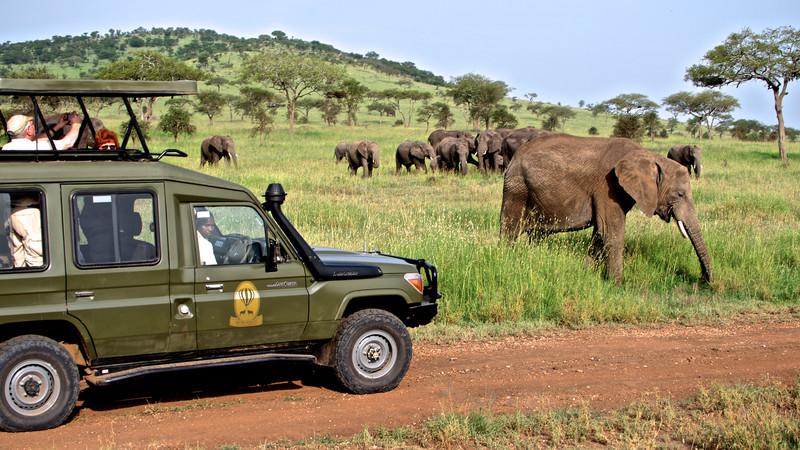 great family vacations safari