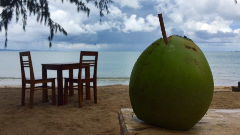 coconut on Phu Quoc beach, Vietnam