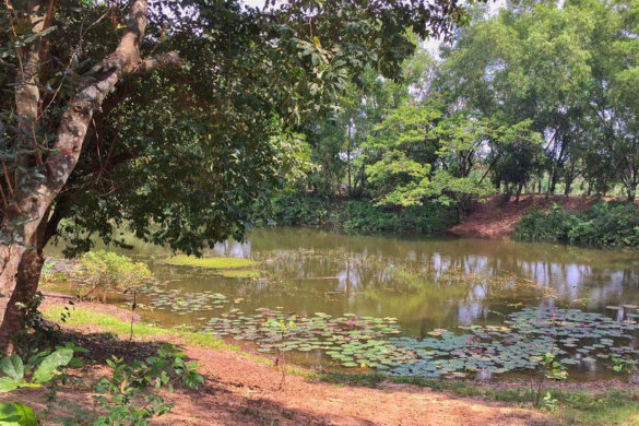 phnom_penh_killing_fields_pond