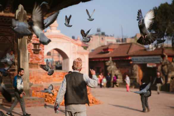 A man and birds in Bhaktapur's Durbar Square, Nepal