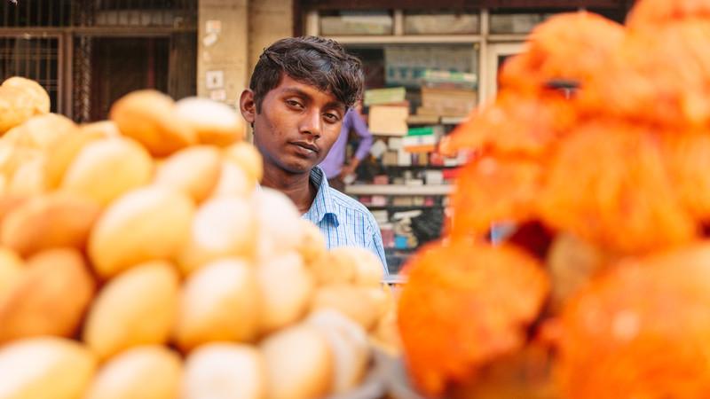 India vegan travel