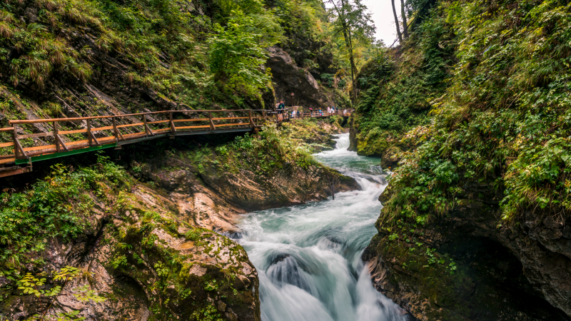 Walking along the Vintgar gorge in Slovenia