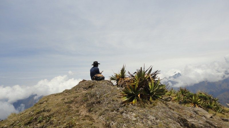 A man looks at the view on the Choquequirao trek