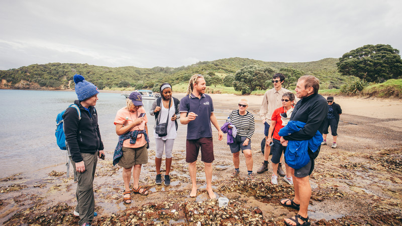 Guide and travellers on beach at Bay of Islands