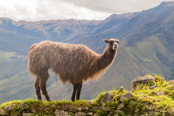 hidden gems in Peru