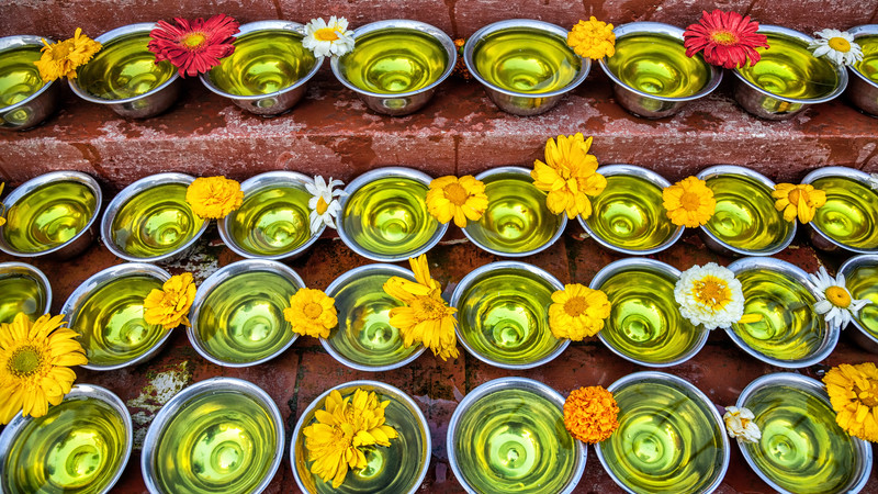 Saffron flowers in bowls, Nepal